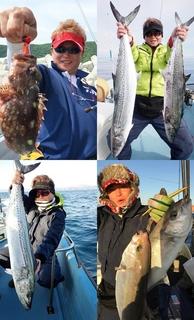 店主が釣った、旬の鮮魚が楽しめるかも