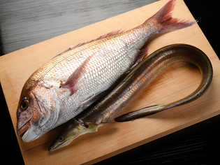 店を代表する食材の「鯛」は、産地からサイズまで決めています