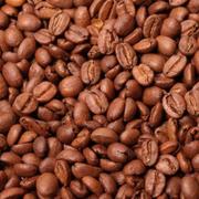 煎りたての深いコナコーヒーを味わえるジェラートです