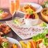 静岡 肉バル ~ニッチーズ~ 肉CHEESE