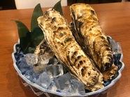 北海道産チーズ盛り合わせ(おすすめ)