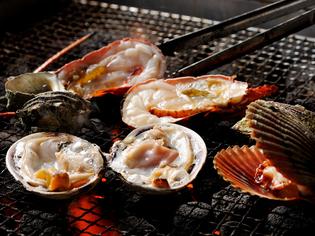 目の前の生浦湾で揚がったばかり、漁師から直接買い付ける魚介類