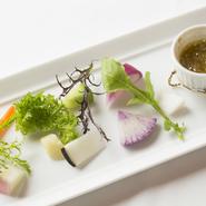 伝統料理とともにシェフがこだわっているのが、食材への探究心。たとえば野菜は、埼玉県狭山の増田農園を中心に、季節により鎌倉野菜や北海道のヤブタファームから直送された味に個性のある野菜を使用しています。
