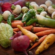 カブ、ダイコン、ニンジン、サトイモなど、その時の旬の野菜を使用。日本の原種の野菜も少なくありません。