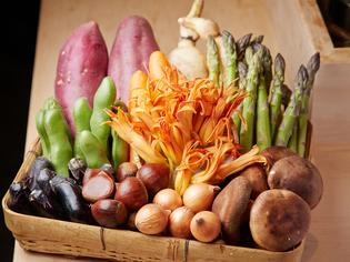 瑞々しいおいしさを湛えた旬の野菜たち