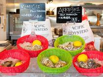 マーケットのように並べられた各地から届く旬の牡蠣