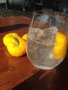 自家製の柑橘チューハイ・フレッシュジュースもおすすめ