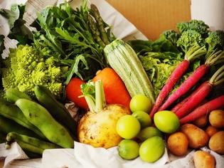 千葉の【ルコラステーション】から仕入れる、全国各地の野菜