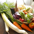 こだわりのオーガニック野菜は、長野と愛知の農家から週に2回ほど直送。普段ほとんどお目にかからない珍しい野菜も、素材の持ち味を活かし、プロの料理人によってアレンジされます。