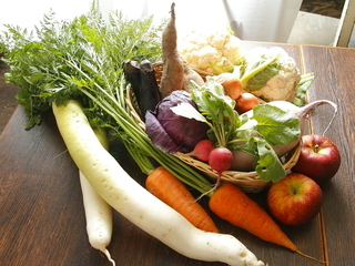 <食材のこだわり>オーガニック野菜を使用