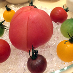 トマトとモッツァレラ 季節のフルーツのマリネ