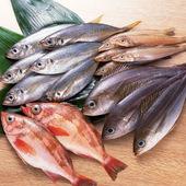 地元の新鮮な魚を中心に四季折々の九州産食材を仕入れています