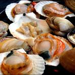 貝はタウリンの宝庫