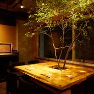 店内には、大きく枝を伸ばした木があり、屋内に居ながらすがすがしい緑を囲んで食事ができます。ビルの中に佇むオアシスで、喉の渇きと心を潤してみてはいかがでしょうか?