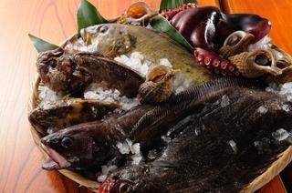 三陸より新鮮鮮魚を入荷!