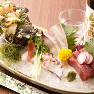 内房の富津で水揚げされる、千葉の地魚が中心です。旬の魚を、漁師から買いつけているので、鮮度は抜群です。ニシガイ、ヒラメ、マグロ、寒ブリ、地だこなど、四季折々の旬の魚介類を使った刺身が自慢です。