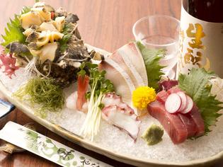 千葉・内房の富津でとれる地魚の『刺身盛り合わせ』は、鮮度抜群