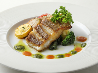 小田原の土地の良さを活かした、新鮮な旬の魚介類