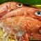 お米は地元茨城産、食材は信頼のおける業者から旬の鮮魚を仕入れ