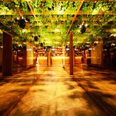 緑のガーデン風席にスタイリッシュな空間と美食料理をご提供。