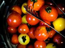 鮮度抜群の野菜を楽しむビュッフェが人気です◎