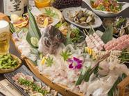 お店自慢の料理が勢ぞろい! 旬魚の刺身をふんだんに盛り込んだ『豪華刺盛付きコース』