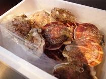 こだわりの食材 北海道産ホタテ貝柱