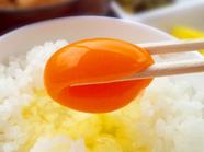 名古屋コーチン卵使用の卵かけご飯