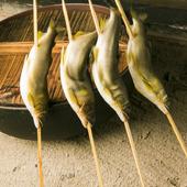 香ばしさとふくよかな旨味。川の女王「鮎」を紀州備長炭で楽しむ