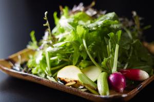 とにかく新鮮でおいしい『朝どれ地野菜のサラダ』