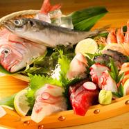 本日の鮮魚お造り
