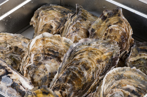『かきのがんがん焼』は、豪快な浜料理が原点