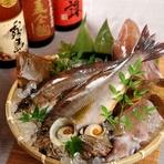 厳選された鮮魚の数々