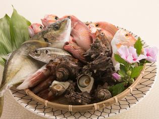 こだわりを持って入荷している「新鮮な魚介類」