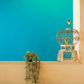 ブルーの壁が印象的。どこを切り取っても絵になる店内