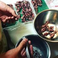 鴨胸肉のスモーク!毎日お店で燻製しています♪
