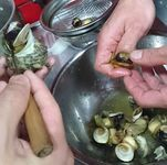 磯の香り豊かな『逗子小坪産 サザエのガーリックバター焼き』をお楽しみください