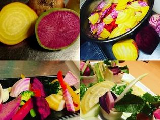 <鎌倉野菜>自然の色が作り出す色鮮やかな鎌倉野菜