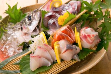 日本酒のお供におすすめの『おまかせ5種盛り』