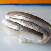 晩夏が旬。コハダの幼魚である『シンコ』