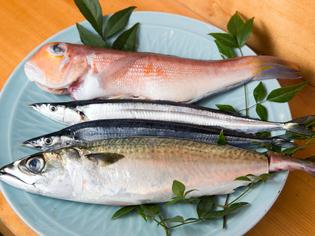 京料理に欠かせないグジと、季節の旬魚を目利き
