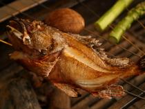 焼きで味わう「ガシラ」、いい食材はシンプルに楽しみたい