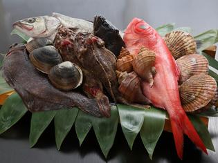 その日に仕入れた新鮮な魚介類をご用意。いろいろな料理に