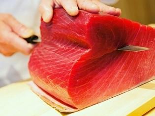希少価値のある本マグロを堪能できる寿司
