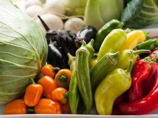 自家農園の新鮮野菜