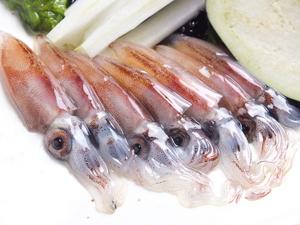 漁が解禁される、春先にだけ味わえる『ホタルイカ』