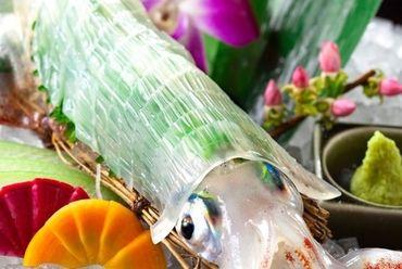 透明感のある美しい身と甘みがたまらない『ヤリイカ活き造り』 100g