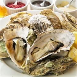 鮮魚に使用した贅沢コース!絶品抹茶しゃぶしゃぶ,本場の中華火鍋を是非お召し上がりください。