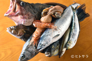 南茅部や噴火湾など、豊かな漁場に恵まれた函館近海の地魚