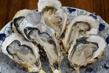 長崎県九十九島産 高島一年若牡蠣